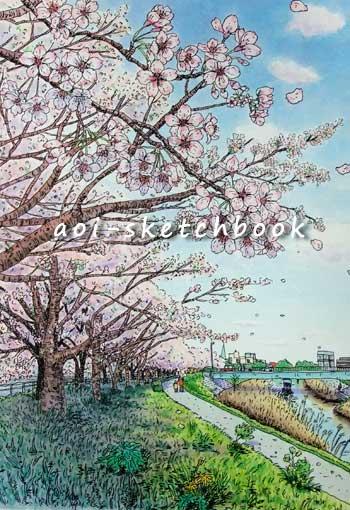 Iwata_ootagawaSakura.jpg