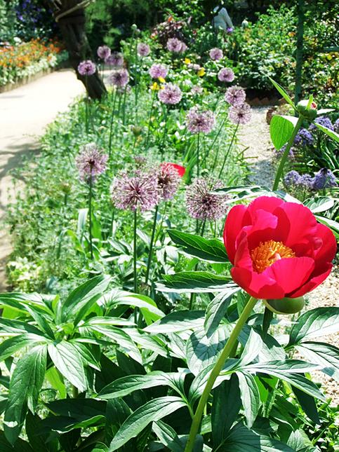 gardenpark18.jpg